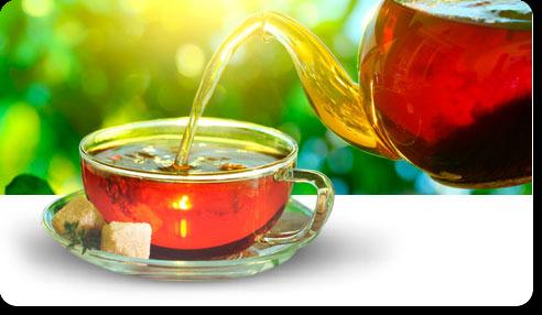 монастырский чай от паразитов как правильно принимать